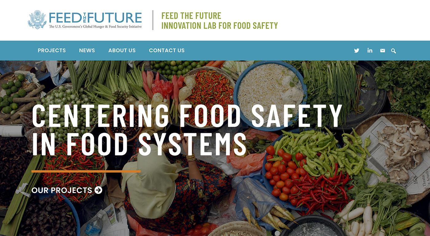 FSIL Website
