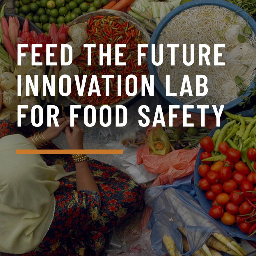 Feed the Future Innovation Lab for Food Safety